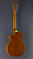 Tanglewood 12-string acoustic folk guitar, cedar, sapeli-mahogany, cutaway, pickup, back side