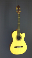 Albert & Müller Classical Guitar Fusion, spruce, rosewood, cutaway, scale 65 cm, year 2009