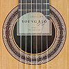 Rosette and label of guitar built by Korean guitar maker Young Seo in 2017, cedar, rosewood, scale 64 cm