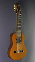 10-string Spanish classical guitar cedar, rosewood